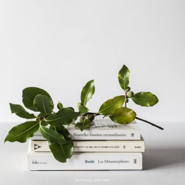 posso-ser-minimalista-e-comprar-livros