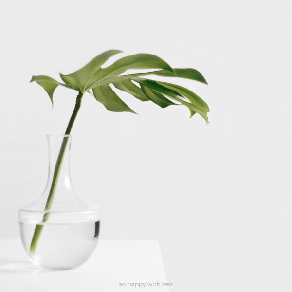 ser-minimalista-e-viver-com-alguem-que-nao-e