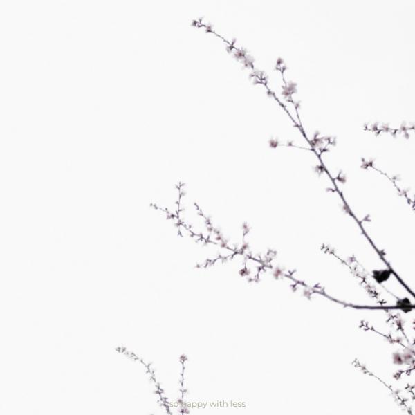 so-happy-with-less-imagem-10-pequenos-passos-minimalistas-que-podes-dar