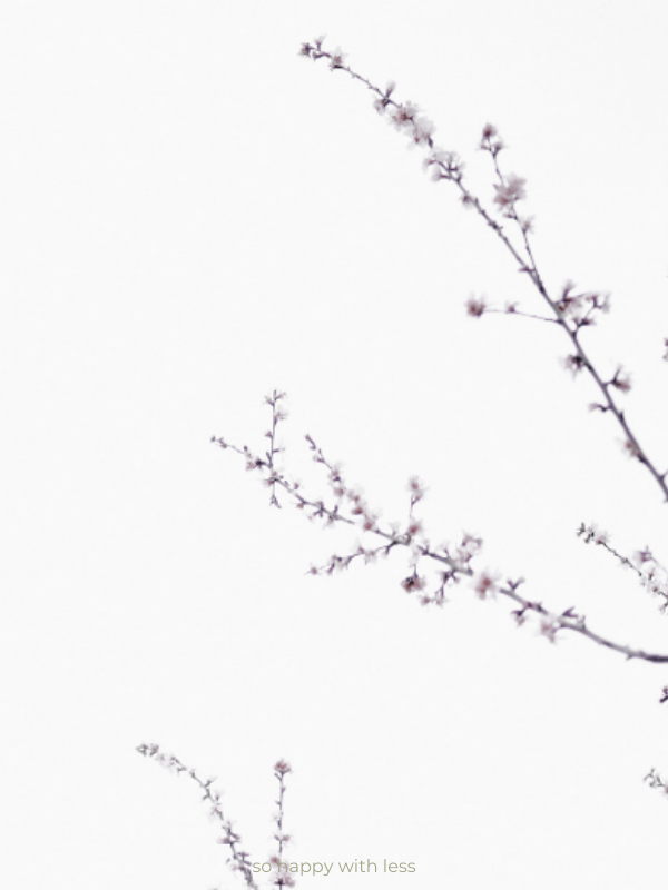10 Pequenos Passos Minimalistas que podes dar